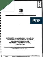 Manual de Organiz Espec de La Dir Gral Adjunt Del Ceferepsi