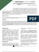 Artículo científico, riego con aguas residuales 120711
