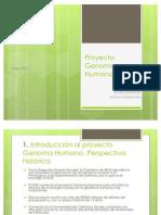 Power Point Genoma Humano
