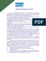Strategii de Marketing International