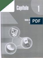 Capítulo 1 - Rede de Comunicação e Computadores