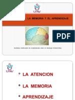 Equipo 1 Atencion, Memoria y Aprendizaje