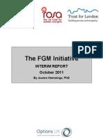 FGM Interim Report