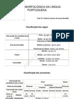 tabela morfologica