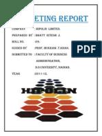 Marketing Report Repaired)