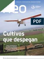 Suplemento Neo Año 3, número 37 (2011)