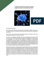 (Que Riesgos Reviste Los Efectos De Una Tormenta Electromagnética Sobre La Actividad Cerebral)