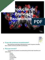 producao proteinas recombinantes