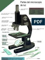 microscopio1