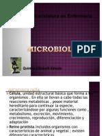 bacteriasformas