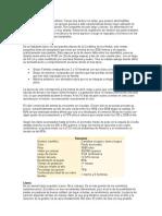 Características de los camélidos