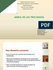 Arbol de Las Tres Raices