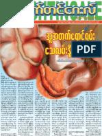 ႏိုက္တင္ေဂးလ္က်န္းမာေရးဂ်ာနယ္ (ဇန္န၀ါရီလ - ၂၀၁၂ ခုႏွစ္) / Nightingale Health Journal January 2012