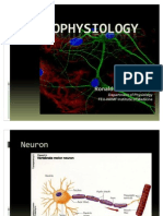 Neurophysiology Made Easy