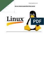 Arranque y Parada en Sistema Operativo Linux Server