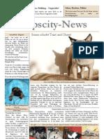 MopscityNews04_09