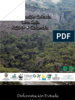 REDD+Colombia 2010
