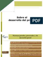 desarrollo_proceso (1)