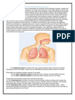 anatomy and physiology of Respiratory System