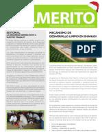 Grupo Palmas - Boletin Palmerito Dic2011