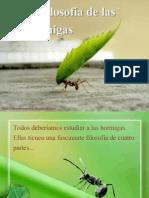 La Filosofia de las Hormigas