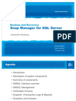 Snap Manager for SQL Workshop