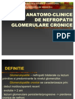Forme Anatomo-clinice de Nefropatii Glomerulare Cronice