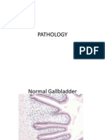 Pathology Case A