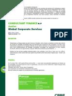 Consultant Finance