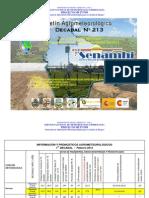 1er Decadal Nro. 213-Febrero -Chaco-Bermejo Camiri, Villa Montes y Yacuiba
