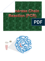7.8. PCR