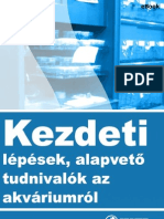 kezdeti_lepesek