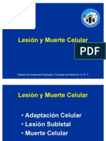 lesinymuertecelular-100510174835-phpapp01