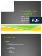 11. CICATRIZACION Y HERIDAS.2012