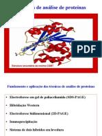Tecnicas de Analise de Proteinas
