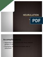 Lecture 7 - Neurulation