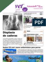 Displasia de Cadera en Caninos