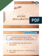 AccaoDeclarativa2009
