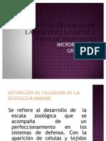 DEFINICIÓN DE FILOGENIA DE LA RESPUESTA INMUNE Y
