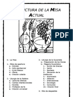estructuradelamisaactual