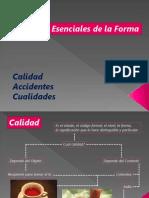 Elementos Essenciales de La Forma- Calidad, Accidentes y Cualidades