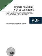 Peña Jumpa - 2004 - Poder judicial comunal Aymara en el sur andino  C