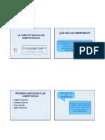 Identificacion de Competencias Presentacion