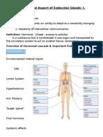 Endocrine Part 1