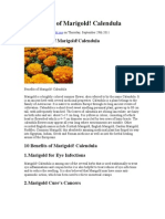 10 Benefits of Marigold