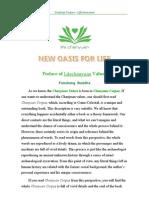 Preface of Lifechanyuan Values