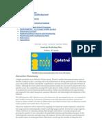 Telstra Business Plan (Case Study)