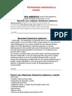 fermenatia malolactica-2