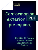 1_C_CONFORMACION