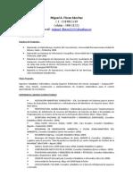 CV-Miguel a Flores
